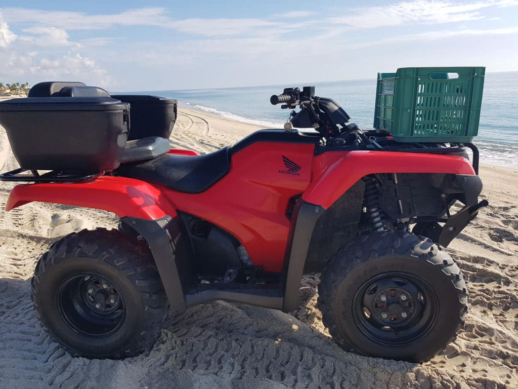 Quad rental Los Barriles